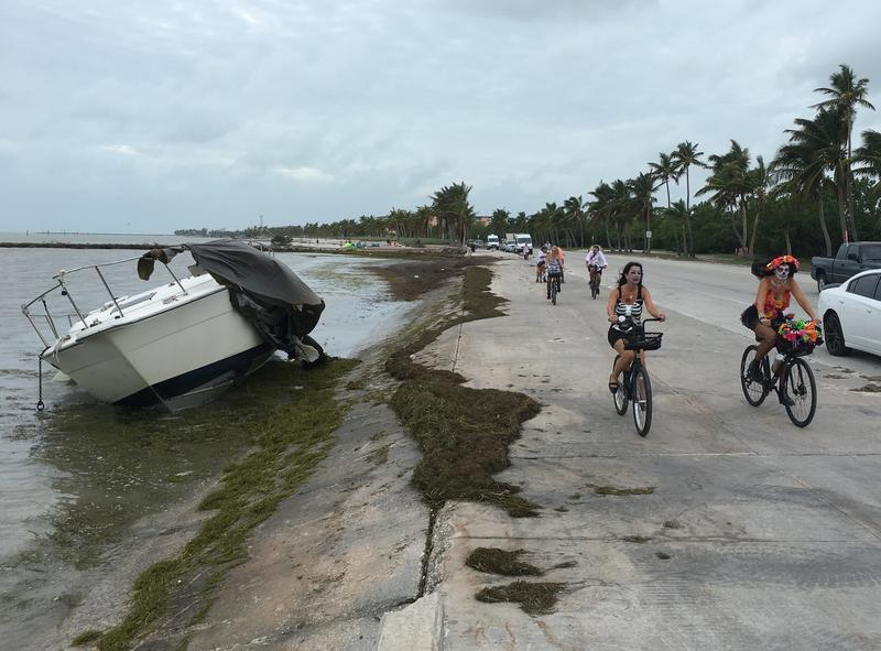 Cyclists head to Key West's annual Zombie Bike Ride along the island's Atlantic Shore.