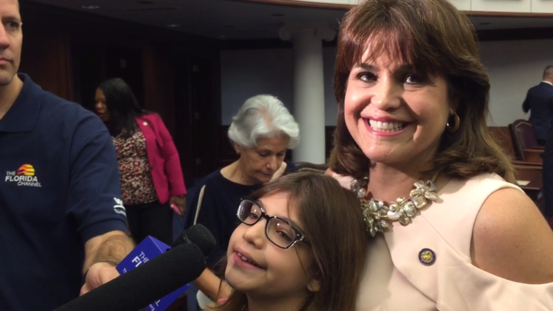 Miami's Annette Taddeo is the first Hispanic Democratic woman in the Florida Senate.