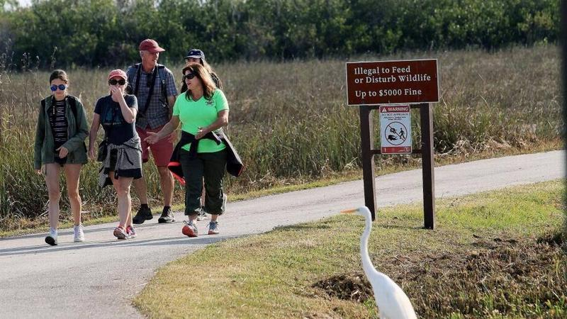 Park guide Stacey Wolfe and a group of tourists from Australia walk along a trail in Shark Valley over the weekend.