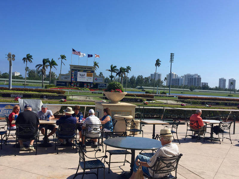 Spectators await the day's opening race at Gulfstream Park in Hallandale Beach, Fla. on Jan. 24, 2018.