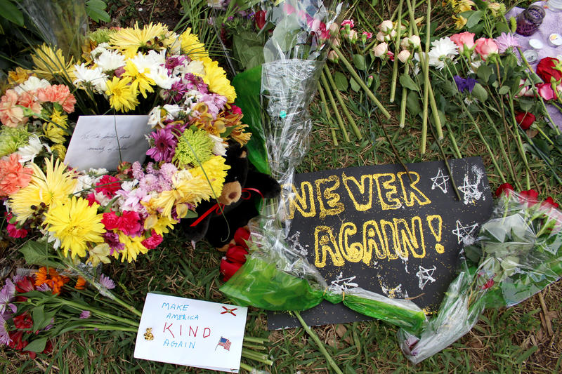 The Marjory Stoneman Douglas High School Public Safety Commission was created in the aftermath of the shooting that left 17 students and staff dead.