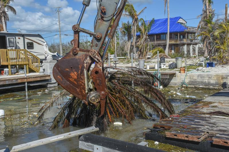 Canal clean-up in the Keys began Friday on Big Pine Key.