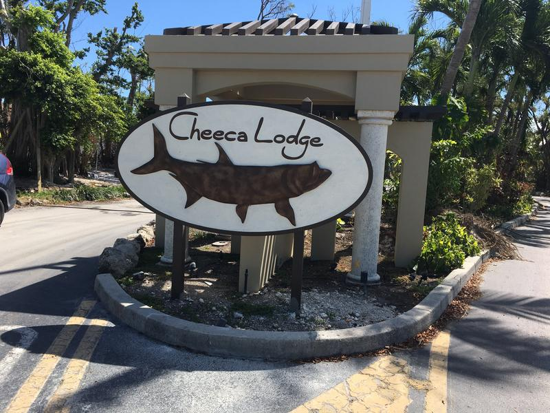 Cheeca Lodge, one of the oldest and largest hotels in Islamorada, is set to re-open March 30, 2018.