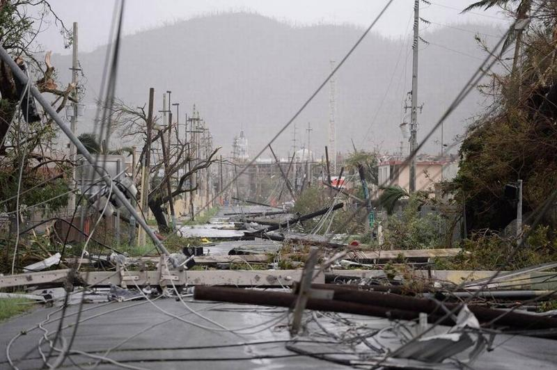 Hurricane Maria knocked down 80 percent of Puerto Rico's utility poles.