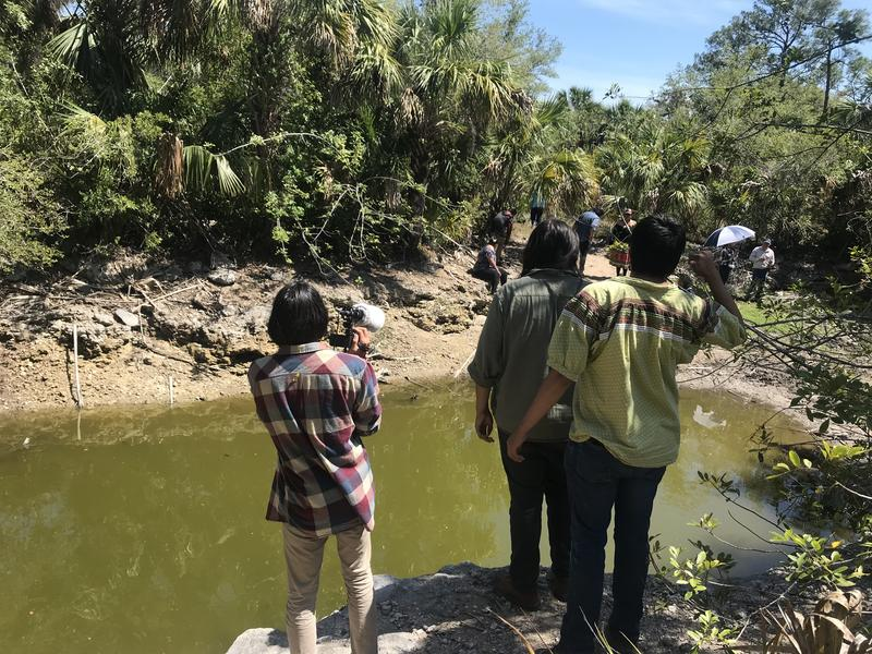 Students and volunteer Dorian Jumper, right, take videos and photos of the baby alligators.