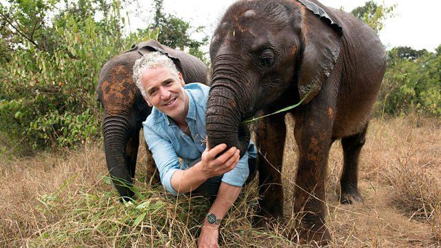 Wildlife photographer Gordon Buchanan in Elephant and Me