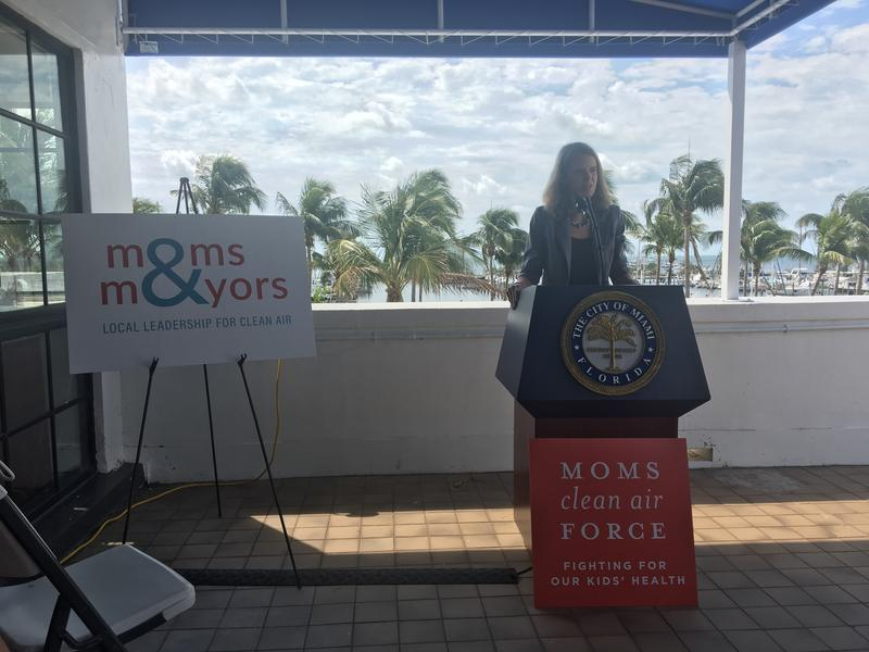 Miami City Resilience Officer Jane Gilbert delivers her remarks at the panel discussion.