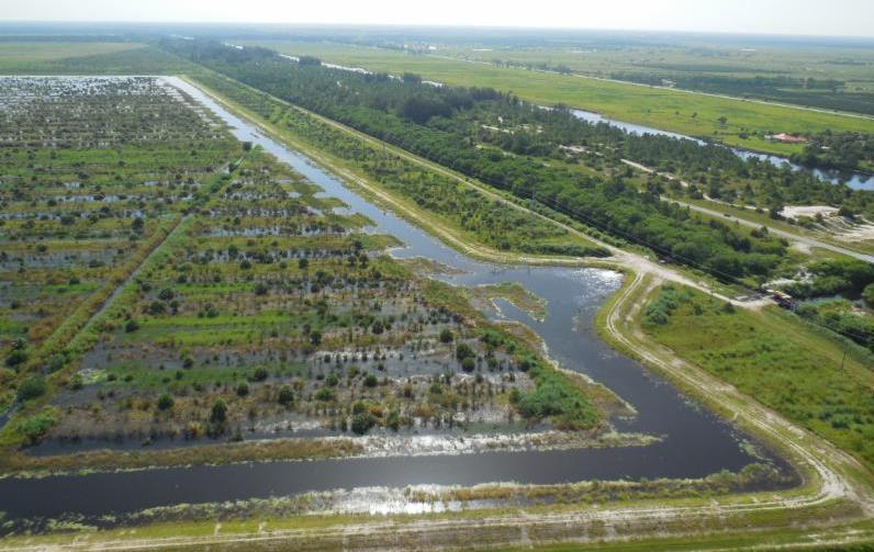 The 3,2000 Caulkins Water Farm stores runoff water, water released from Lake Okeechobee, and rainfall.