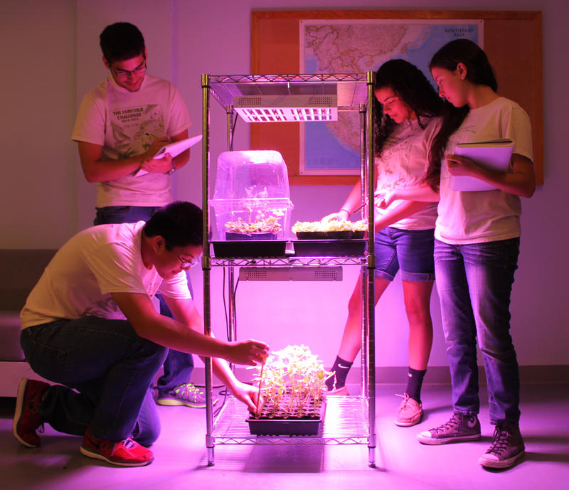 Students from the Fairchild Challange testing plants for outer space.