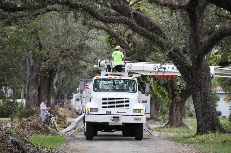 Most of the outages caused by Hurricane Irma last year were from flying debris, namely overgrown trees, knocking out above-ground power lines, according to Florida Power & Light.