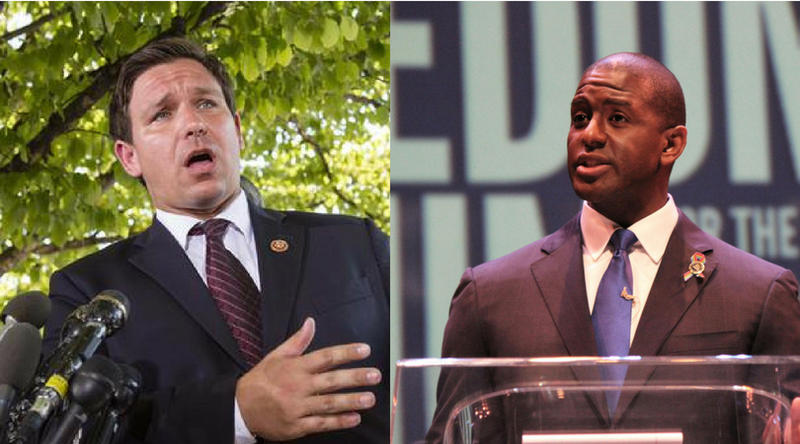 Congressman Ron DeSantis and Tallahassee Mayor Andrew Gillum are the two candidates running for Florida governor.