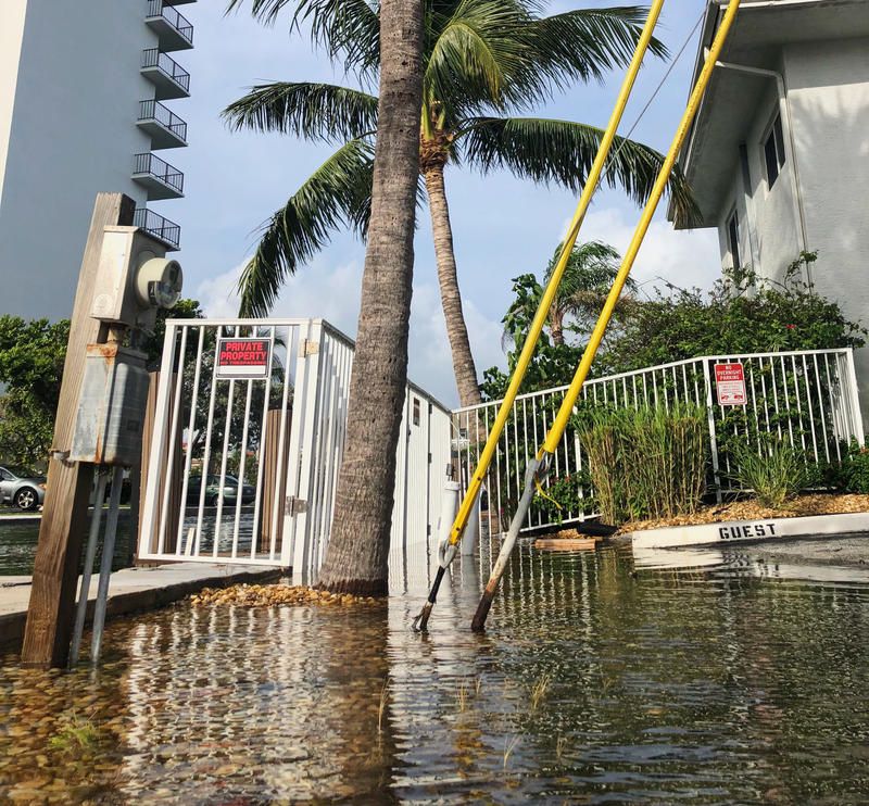 The marina off Canal Drive in Pompano Beach flooded on the north side of the street during King Tides on Oct. 9, 2018.