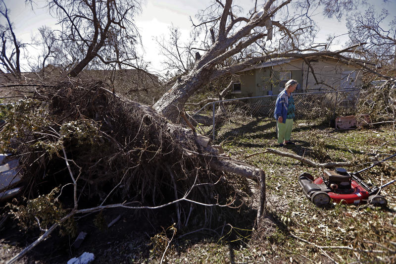 Mary Frances Parrish shows her toppled pecan tree, which fell in a neighbor's house, in the aftermath of Hurricane Michael in Panama City, Fla., Saturday, Oct. 13, 2018.