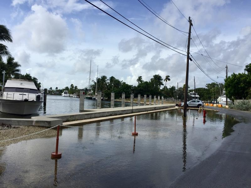 King Tide season brings flooding to coastal Fort Lauderdale neighborhoods