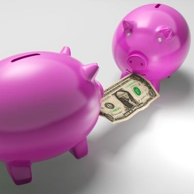 This little piggy bank wants taxes for public works. This little piggy bank does not. Neither of them can vote.