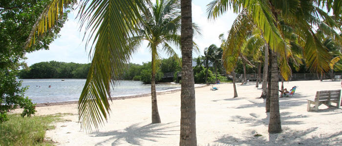 """John Pennekamp Coral Reef State Park is one of the parks hosting """"First Day Hikes"""""""