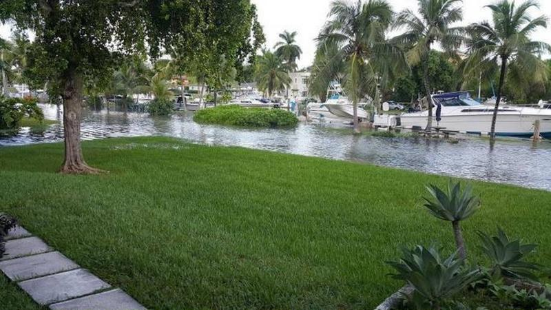 A Miami-Dade neighborhood that relies on septic tanks experiences flooding during the 2016 King Tide. A new report commissioned by the county shows that half of the county's septic tanks break down yearly, a problem that sea level rise will worsen.