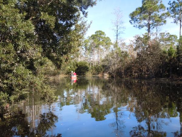 The Loxahatchee River in Palm Beach County is a popular spot for outdoor recreation.