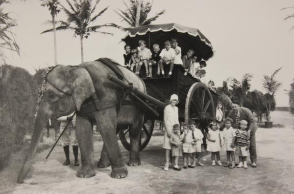 Rosie the elephant on Miami Beach in 1930.