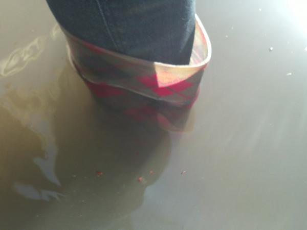 Arianna Prothero's rain boots, on the sidewalk at 10th and Alton in Miami Beach.