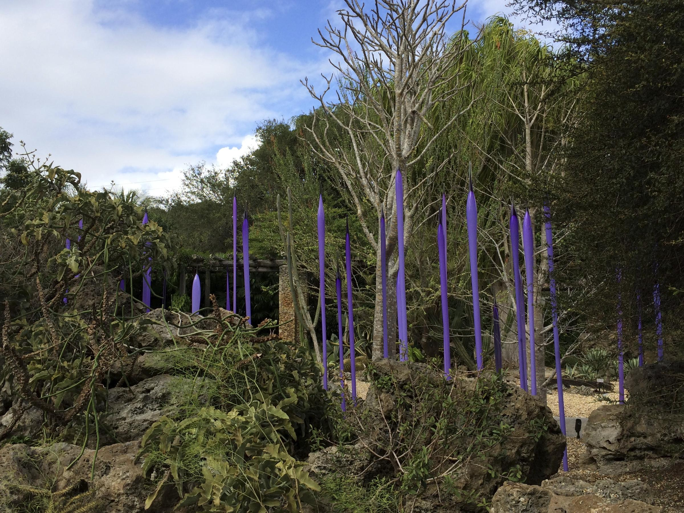 Fairchild Hopes Chihuly\'s Colorful Glass Works Will Bring Crowds   WLRN