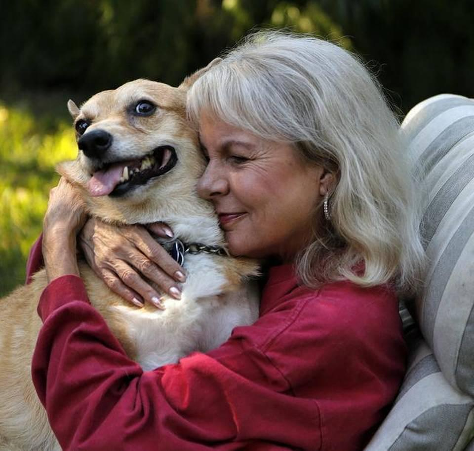 longtime south florida broadcaster former anchor kelley kelley mitchell is pictured her corgi oscar in her backyard in miami shores she wrote essays about oscar s chemotherapy for the miami herald and