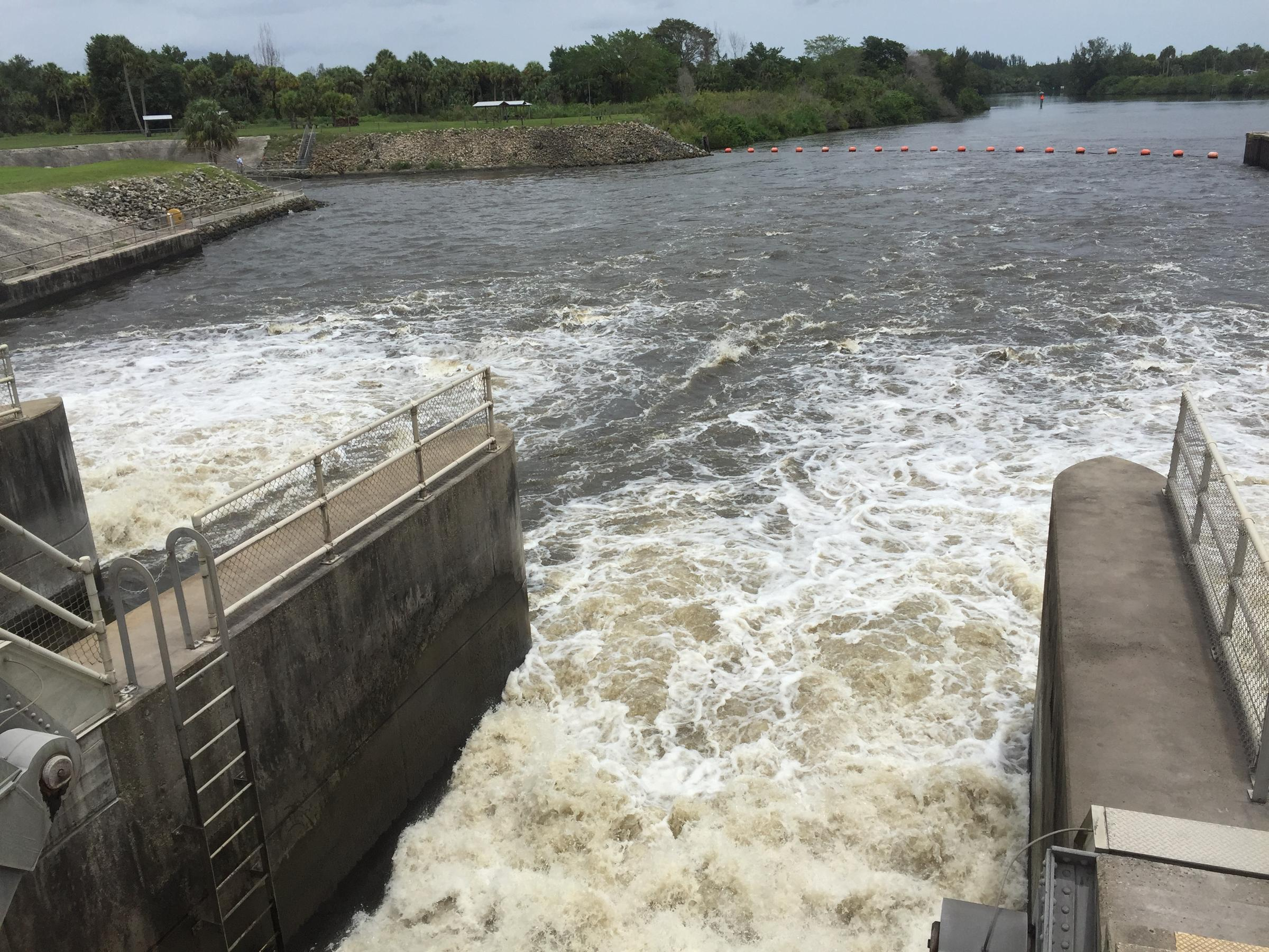 Currently 1.1 billion gallons of water per day are being released from the St. Lucie Canal that carries water from Lake Okeechobee toward the Atlantic ... & High Levels at Lake Okeechobee Leave South Florida With A Water ...