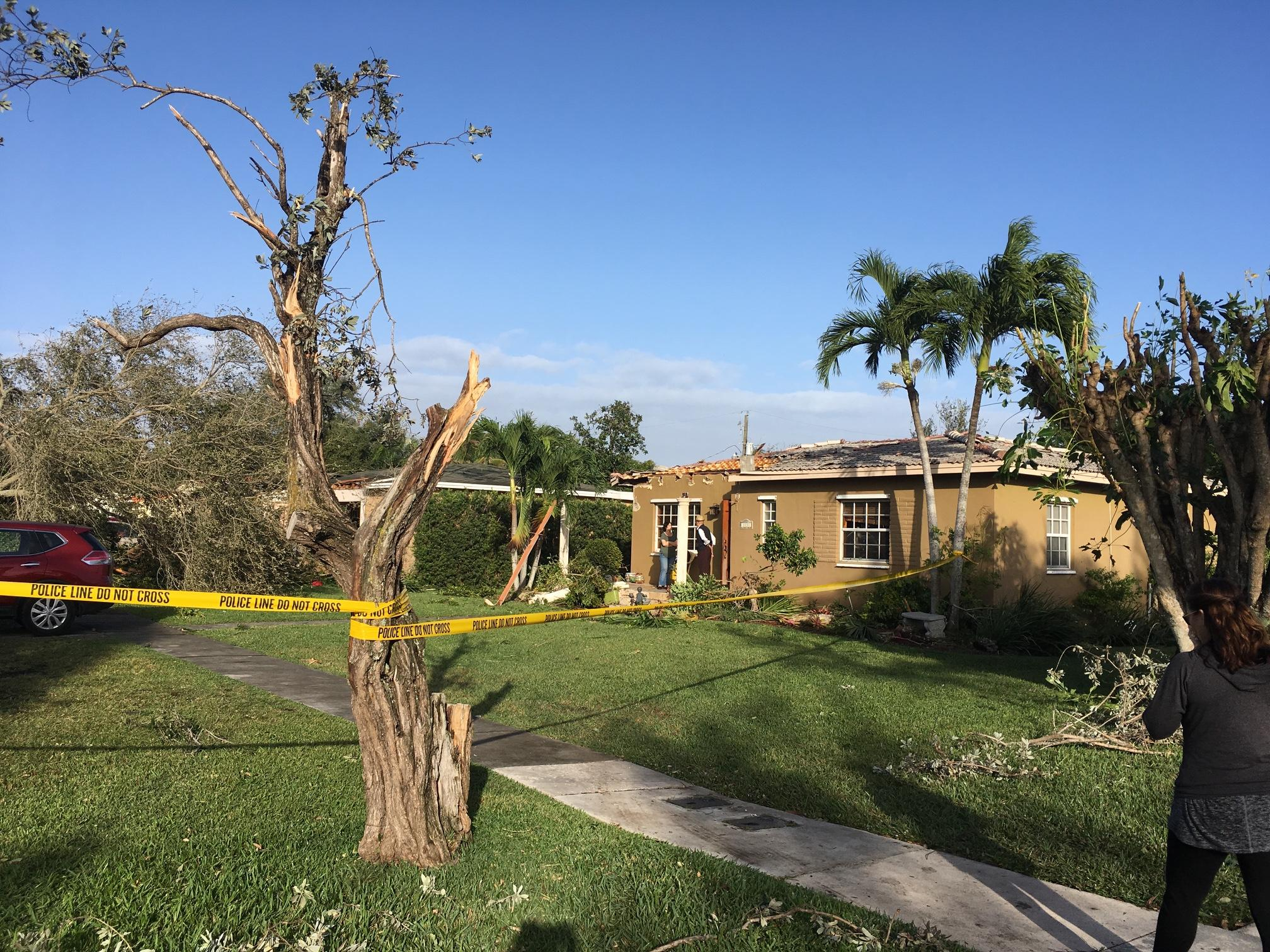 The trees bent sideways:\u0027 Two Tornadoes Hit Palm Beach, Miami-Dade ...