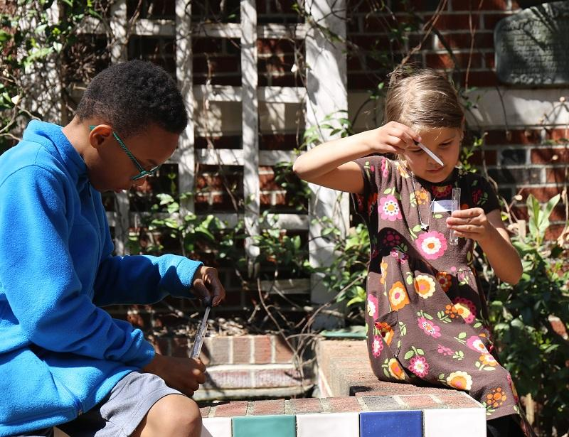 A.C. Moore students sample and analyze pond water at their school.