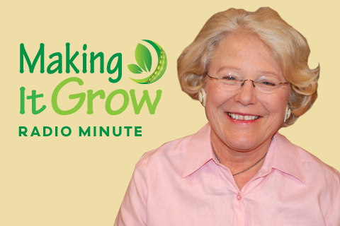 Making It Grow! Minute logo