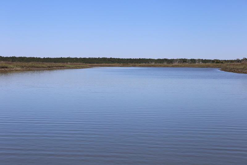 The study of the persistent low salinity levels in the North Inlet Estuary is part of a series of research the University of South Carolina has funded to examine how nature and human communities were impacted by the October 2015 flood.