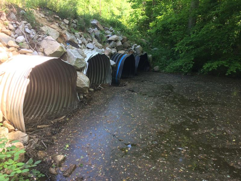 Obstructed culverts on the east side of Gills Creek Road.