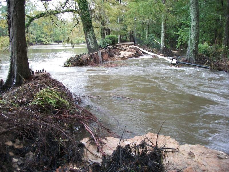 The back walk/ bridge at Swan Lake Iris Gardens during the flood of October, 2015.