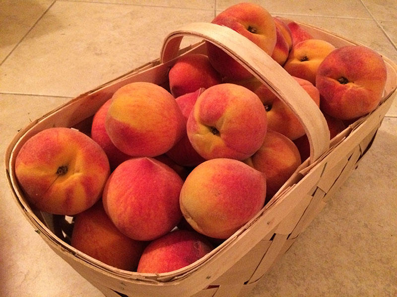 Sweet, delicious South Carolina peaches are as good as it gets in the summer.