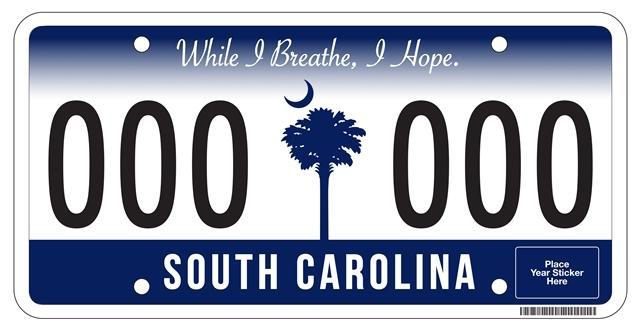 SCDMV license plate