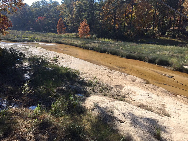 A stream meanders through the dry, weed-choked bed of Cary Lake.