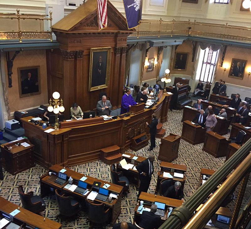 The South Carolina Senate