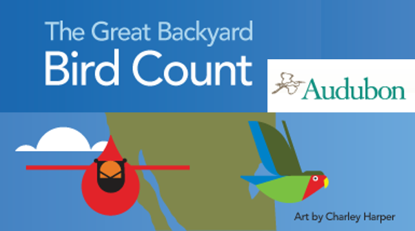 logo for the Great Backyard Bird Count