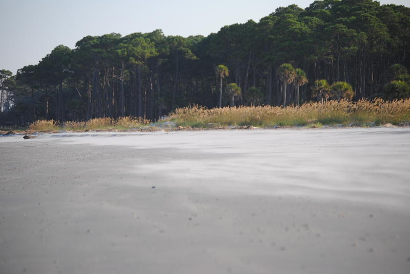 Family camping photo of  Hunting Island 2012