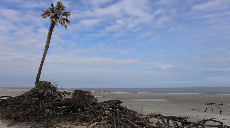 Hunting Island State Park Campground area.