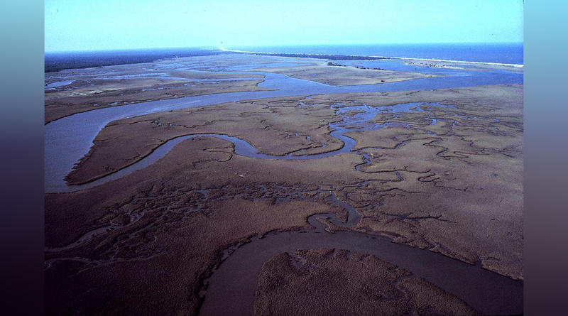North Inlet - Winyah Bay National Estuarine Research Reserve. Aerial view of meandering tidal creeks and extensive pristine marshes in North Inlet Estuary. Vicinity of Georgetown, South Carolina.