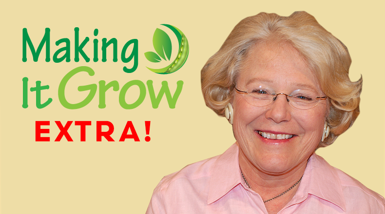 Making It Grow Minute Extra logo