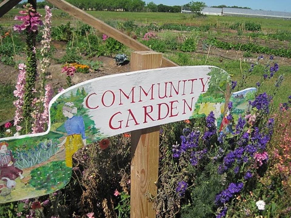 Community Garden to Benefit Area Food Banks WMKY