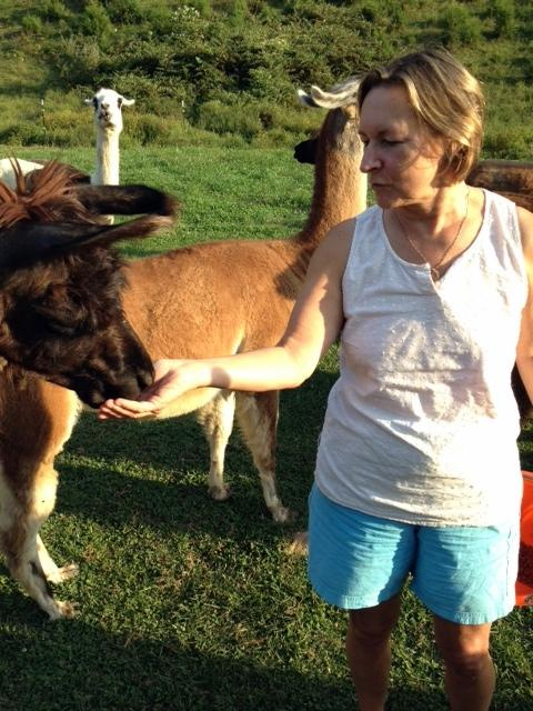 Lucy Ivanoff with one of her Llamas