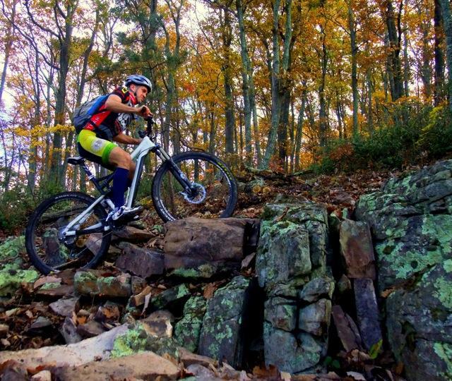 A biker rides along Shenandoah Mountain