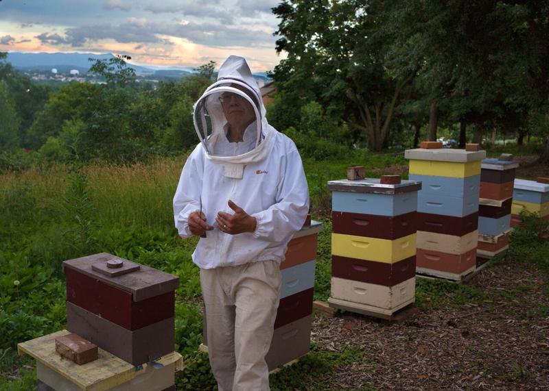 Seminary professor Kenton Derstine in front of his hives on the Eastern Mennonite University hill.