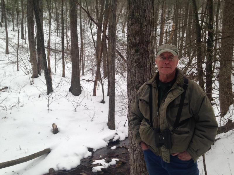Larry Carpenter in the woods near Hone Quarry, where he says he saw two mountain lions nearly 40 years ago.