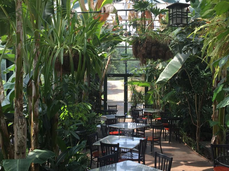 Glass House Winery's tropical conservatory.