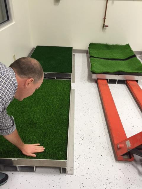 Selection of turf types used for testing in Biocore.
