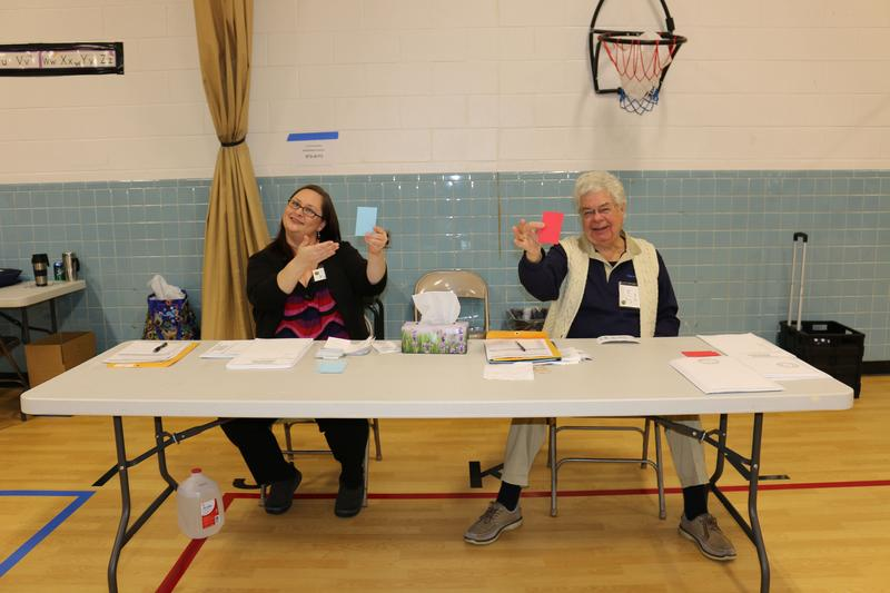 At the Woodbrook Elementary School polling station, voters receive a red or blue ticket, depending on which party's primary they're participating in. Poll workers Kim Tyler and Jim Hill distribute the ballots.